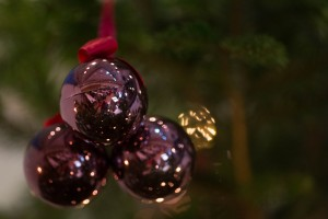 2014 Weihnachtsfeier Gartenfreunde-062